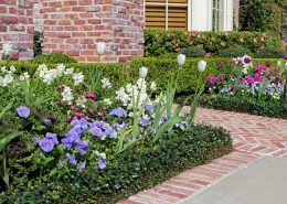 Tulips, snapdragons and violas are a beautiful combination for early spring.