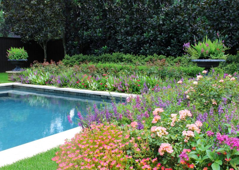 The Houston Gardener – Fall2017
