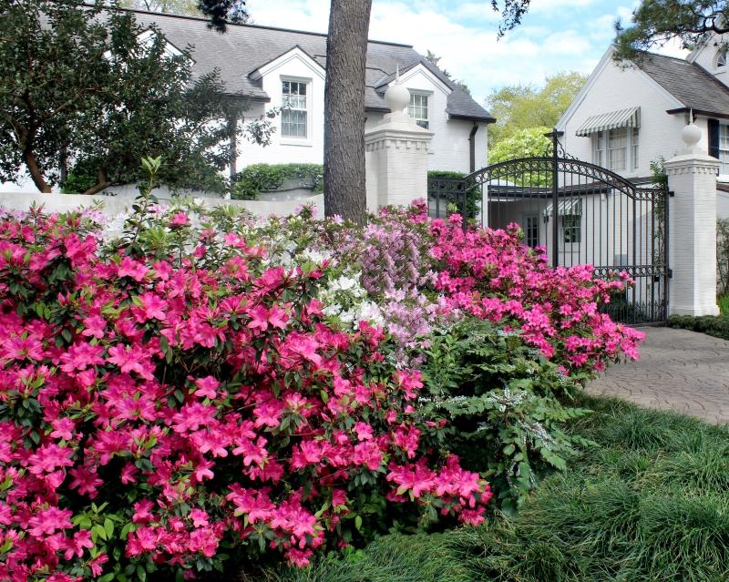 The Houston Gardener – Spring2018